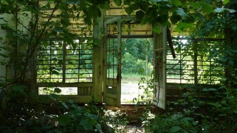 overgrown-store2-3627